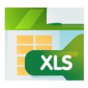xls_logo